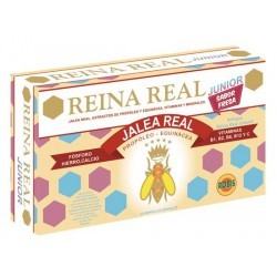 REINA REAL JUNIOR 20 AMP 10ML
